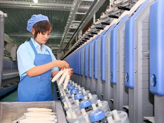 Công nhân tại nhà máy
